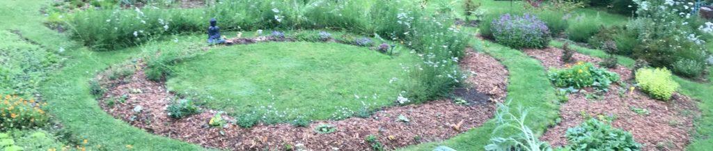 Apprendre les bases dans son jardin en y consacrant un coin pour des plantes médicinales